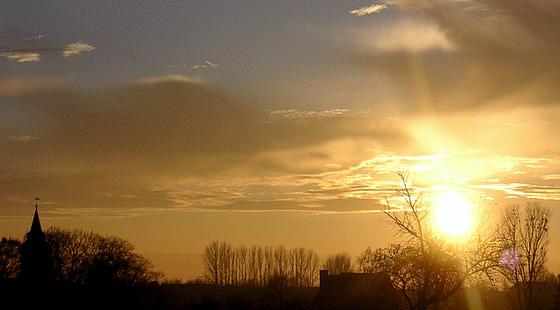 Abendsonne über Dorf Wehlen