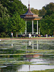 Bandstand and algae
