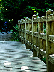 100616Wooden Bridge