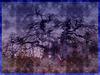 Arbre maléfique / Evil Swedish tree