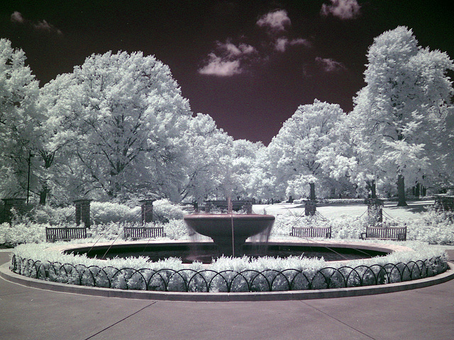 Loose Park (0065)