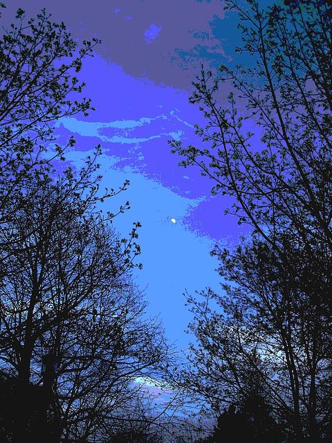 Parc du centre-ville / Downtown park -  Dans ma ville / Hometown - 24 avril 2010 - Postérisation