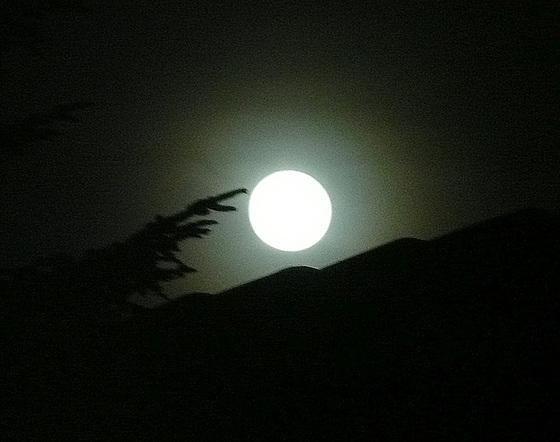 Sanfter Vollmond - carpe noctem - genieße die Nacht