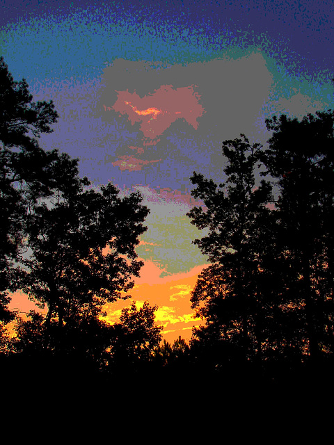Lever de soleil / Sunrise - Pocomoke, Maryland. USA - 18 juillet 2010 - Couleurs ravivées en postérisation