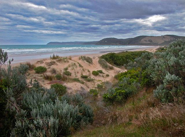 Dunes at Victoria's coastline