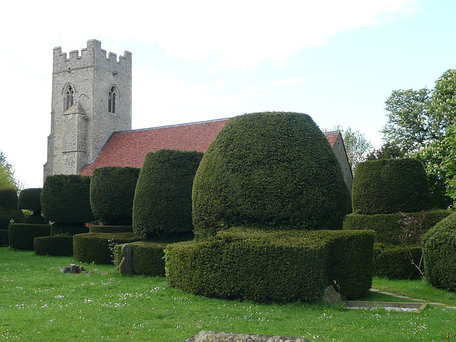 borley church, essex, c16 tower, c11 nave. great topiary, locked church