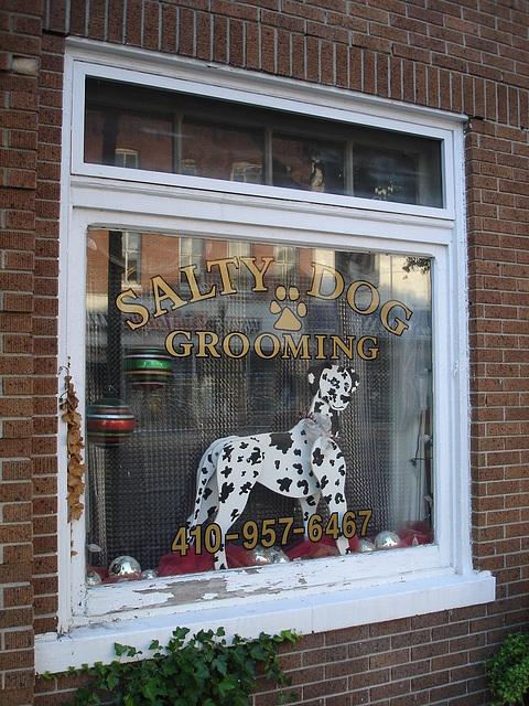 Salty dog grooming window / Fenêtre canine
