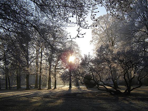 Nederland - Apeldoorn, Oranjepark