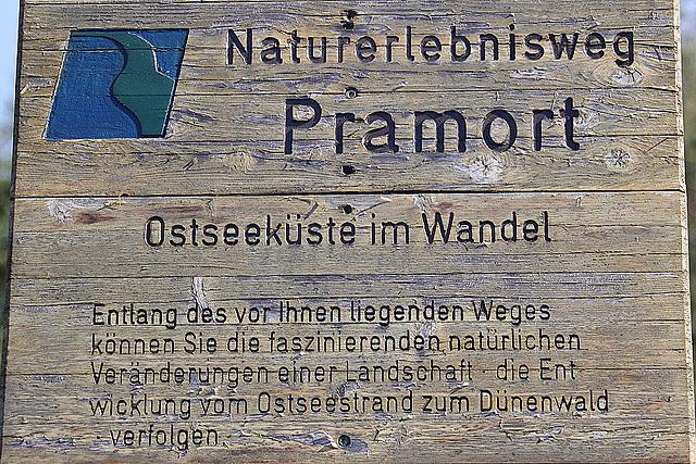 20100923 8349Aaw Zingst, Pramort