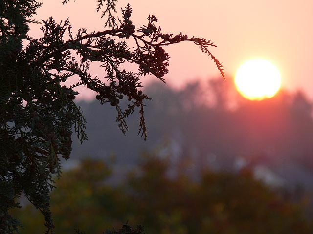 de nouveau: Sonnenuntergang