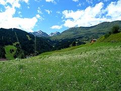 Blick von Serfaus auf den Furgler  3004 m