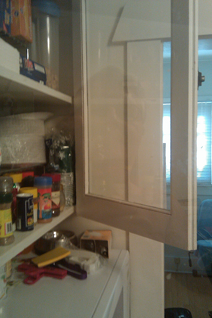 KITCHEN CABINET RELECTION