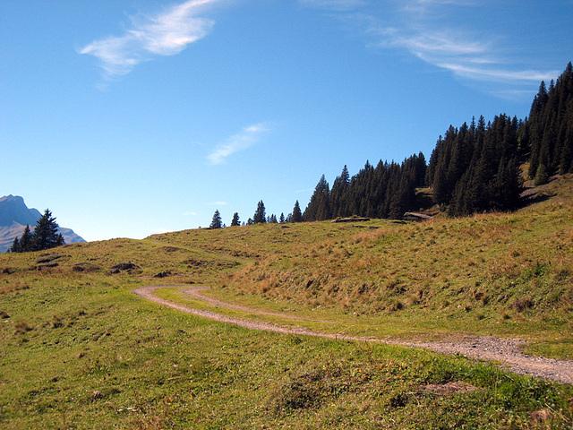 IMG 3808 Der Murmeliweg