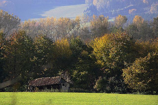 20101026 8654Taw Norderteich, Billerbeck