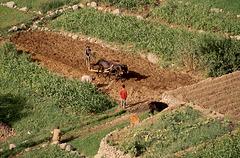 1993-Maroc-061(1)R