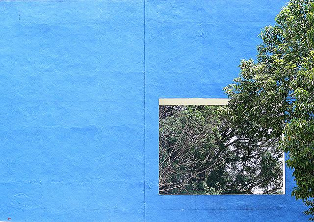 Window in a blue wall