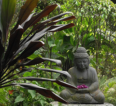 Buddha with flowers