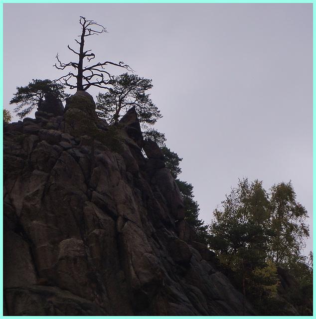 im Granit vom Okertal