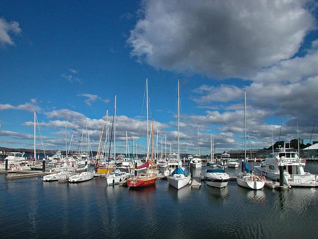 Marina in Hobart