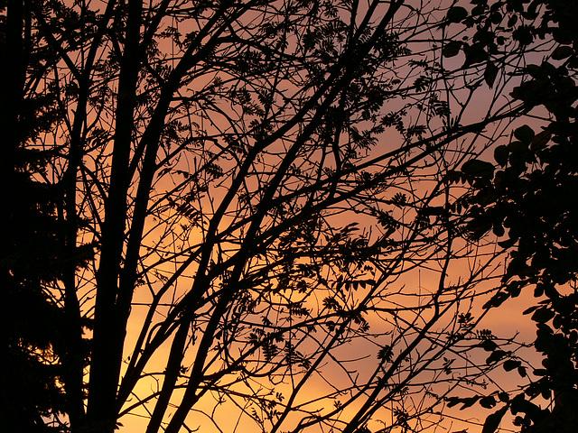 Sonnenaufgang - Sunrise