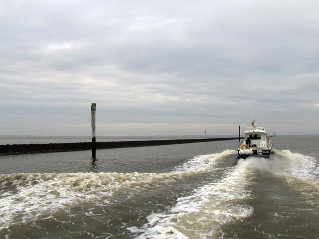 IMG 1624 Hafen Neuharlingersiel