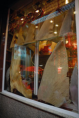 Shark fins should not be offered in Chinese restaurants !!!