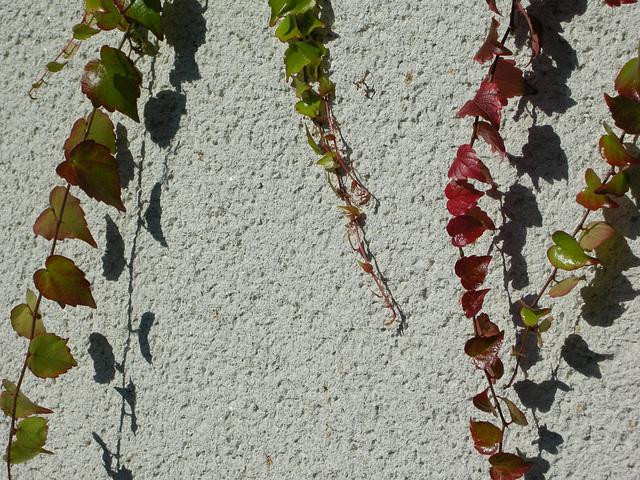 Farben und Schatten