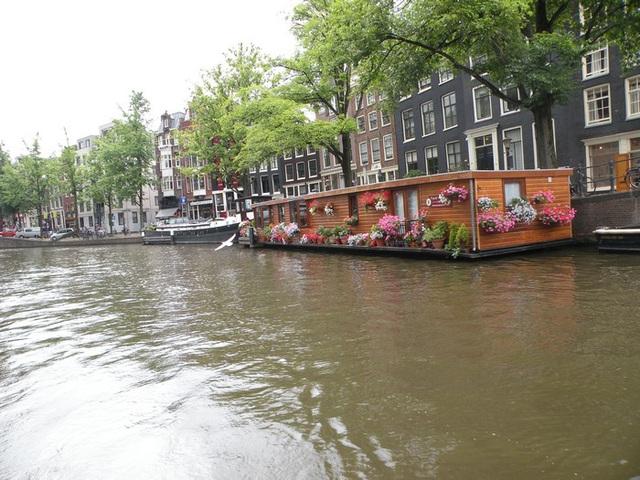 Nederlando 2010
