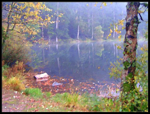 le silence au bord du lac