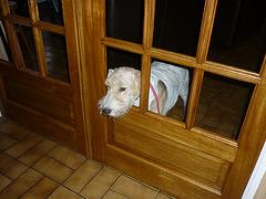 J'ai la fenêtre .....mais pas les carreaux!!!!!!