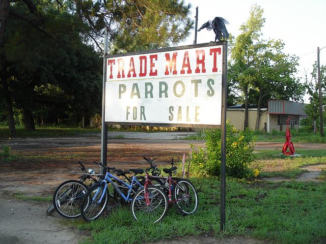 Vélos & perroquets /  Bikes & parrots -Antiquités texanes / Texan antiques - Jewett, Texas. USA - 6 juillet 2010.