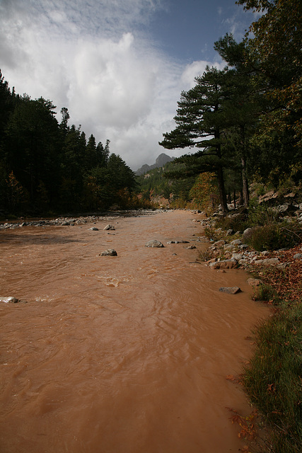 Flooded river - Turkey 2010