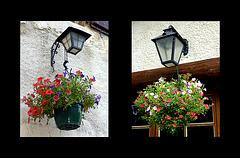 Fanals i flors