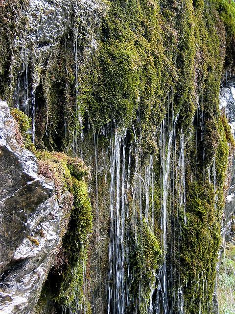 Wasser - Moos - Felswand