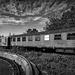 fire_sky_train