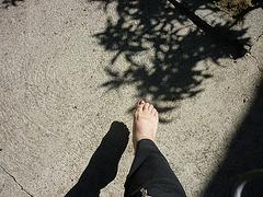 jeux d'ombre :-))