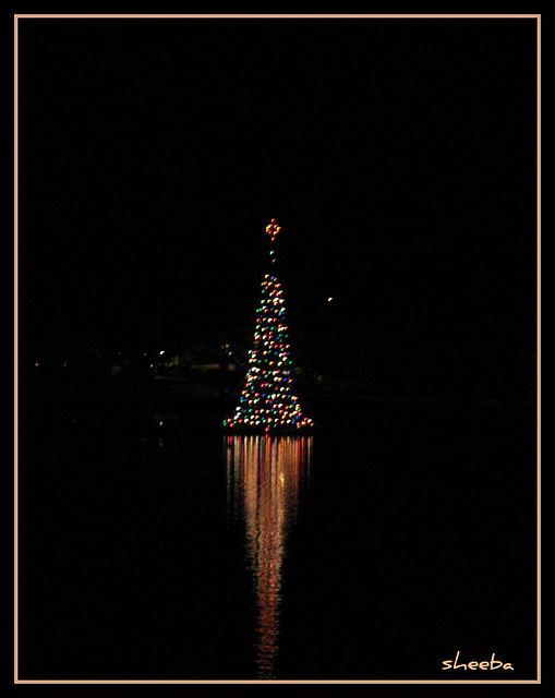 Lights of the Season -