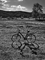 Bike-b1595
