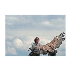 le temps des condors