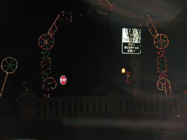 Christmas light near the lake..