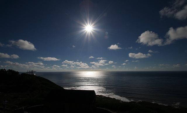 Pacific & Sun (8055)
