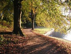 Herbststimmung am Elbe-Lübeck-Kanal 2