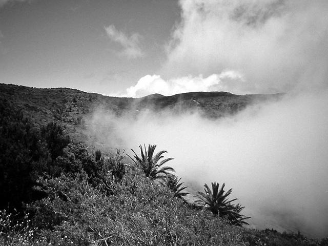 DSCN0731 Nebel  über Las Hayas