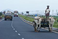 Hazards of the highway