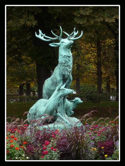 Brame au jardin du luxembourg