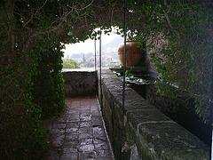 A La Cartuja de Valdemosa. Mallorca