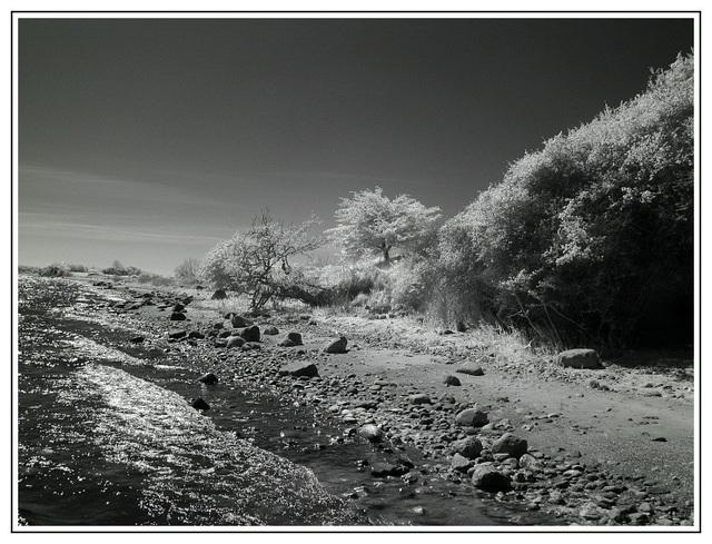 Küste bei Altkamp