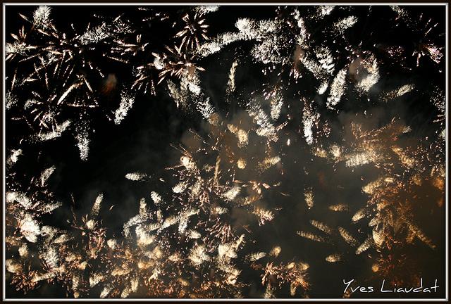 2010 Feux d'artifice - Fêtes de Genève 6106