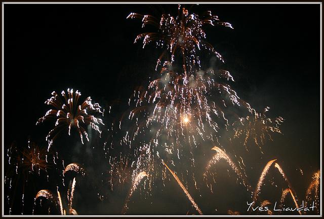 2010 Feux d'artifice - Fêtes de Genève 6118