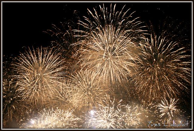 2010 Feux d'artifice - Fêtes de Genève 6168